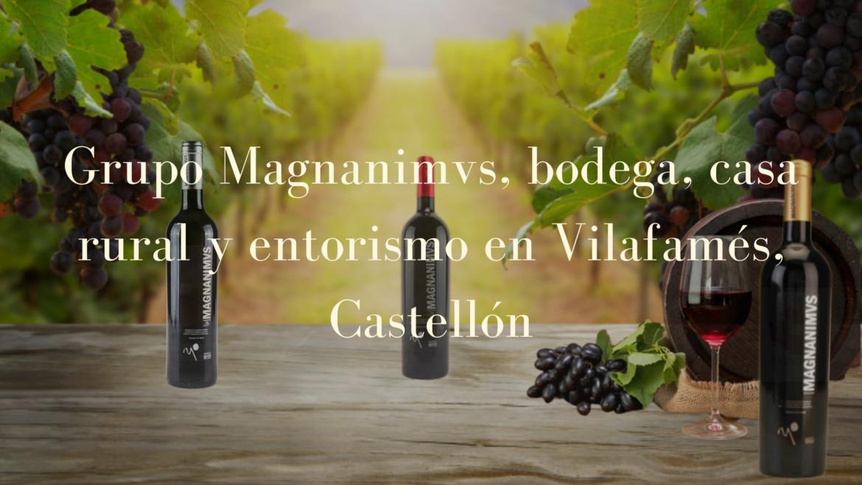 Grupo Magnanimvs, Bodega, Casa Rural y enoturismo en Vilafamés, Castellón.